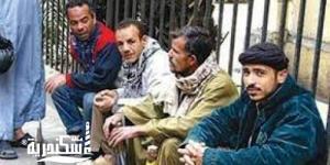 تخصيص 54 مليون جنيه لتشغيل العمالة غير المنتظمة بالإسكندرية