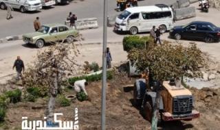 تعرف على التعديلات المرورية بميدان سيدي بشر بحي المنتزة