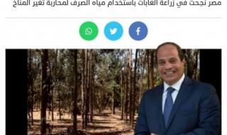 شعبة الأخشاب : نجاح الغابات الشجرية في مصر سيخفض من استيراد بعض أنواع الأخشاب من الخارج