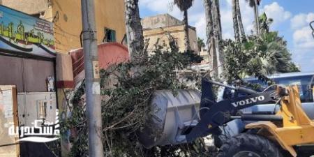 حي الجمرك يواصل العمل ويرفع  ١٥ طن قمامة من الشوارع والميادين