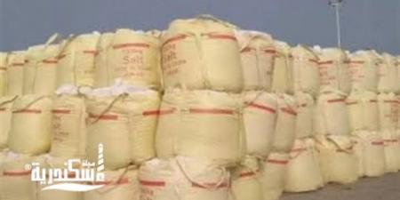 التحفظ على نصف طن صويا منتهى الصلاحية داخل مخزن دون ترخيص بالإسكندرية