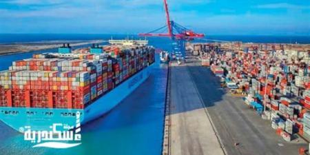 الإسكندرية لتداول الحاويات ترفع خطتها الاستثمارية إلى 294.8 مليون جنيه