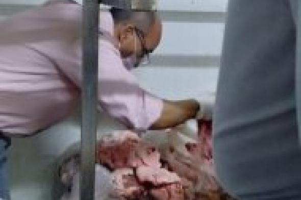 الرقابة الإدارية تشن حملات على ثلاجات و مصانع اللحوم بالإسكندرية