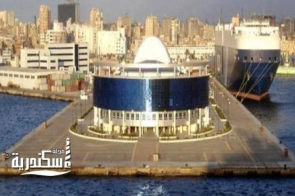 ميناء الإسكندرية... تطبيق التسجيل المسبق للشحنات الواردة إلى مصر إلزاميا في يوليو