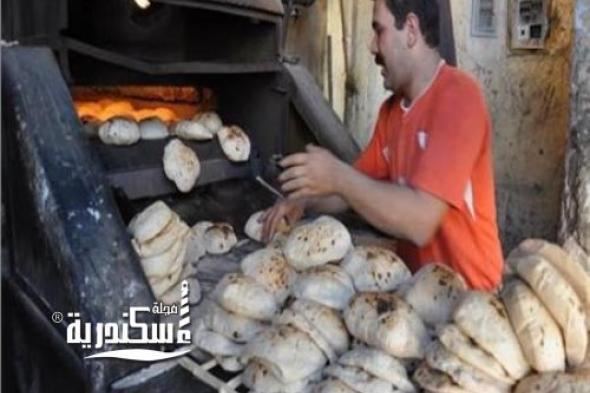 تموين الإسكندرية.... تحرر 292 محضرًا بـ7 إدارات بمخالفات متنوعة