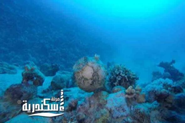 بعثة أثرية بآداب الإسكندرية تعثر على مقدمة السفينة الغارقة بجزيرة سعدانة بالبحر الأحمر