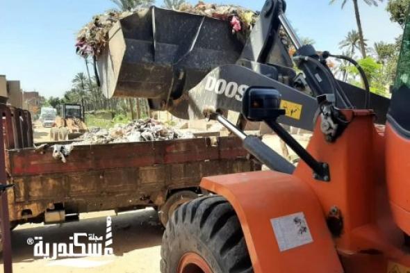تنفيذية الإسكندرية.......رفع 92 ألف طن مخلفات من الأحياء