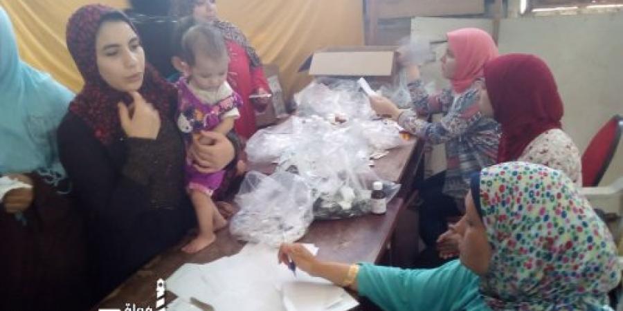 مركز معلومات التنمية المحلية بحي ثان المنتزه في الإسكندرية  يكثف مجهوداته في إقامة قوافل سكانية بنطاق الحي