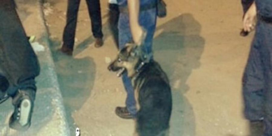 شنطة سوداء ملقاه في الشارع بمنطقة المنشية تثير شكوك الشرطة وتسبب ذعر للمواطنين