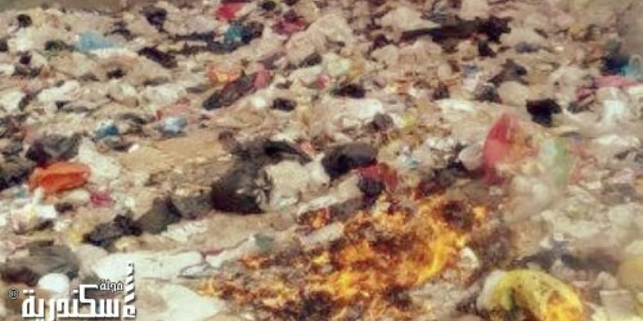 الحماية المدنية بالإسكندرية تسيطر علي حريق بمخلفات قمامة أمام مساكن مصلحي بالقرب من شريط السكة الحديد خط مطروح