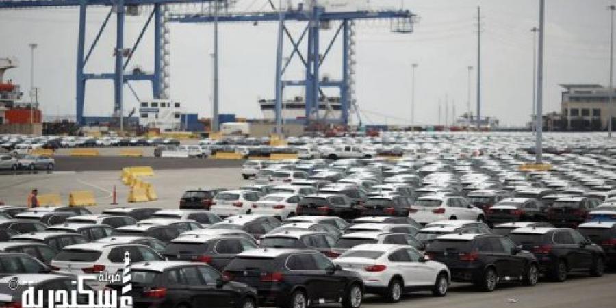 جمارك الإسكندرية تفرج عن سيارات بـ2.7 مليار جنيه