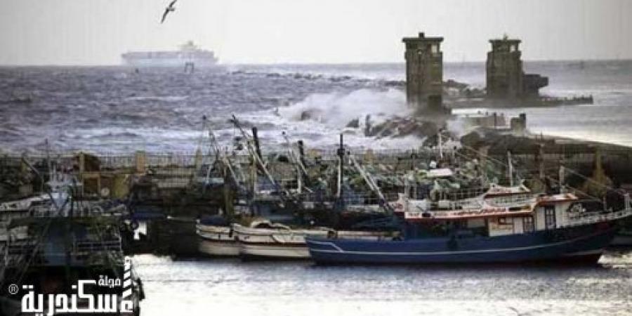 غلق ميناء الإسكندرية بسبب الطقس السئ.. صقيع و عواصف و أمطار غزيرة بالمحافظة