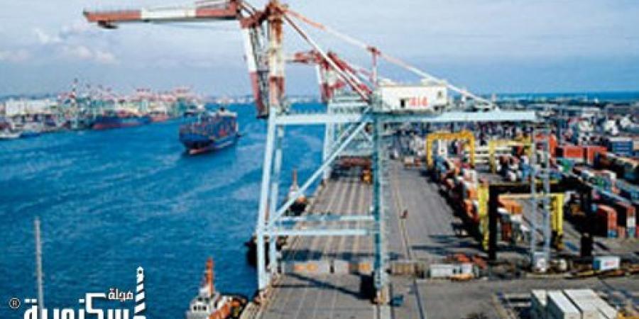 وصول 3 آلاف رأس ماشية لميناء الإسكندرية ونشاط حركة السفن والبضائع