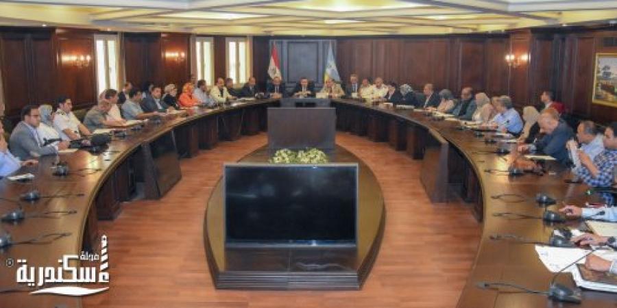 الإسكندرية تستعد لاستقبال كأس الأمم الأفريقية