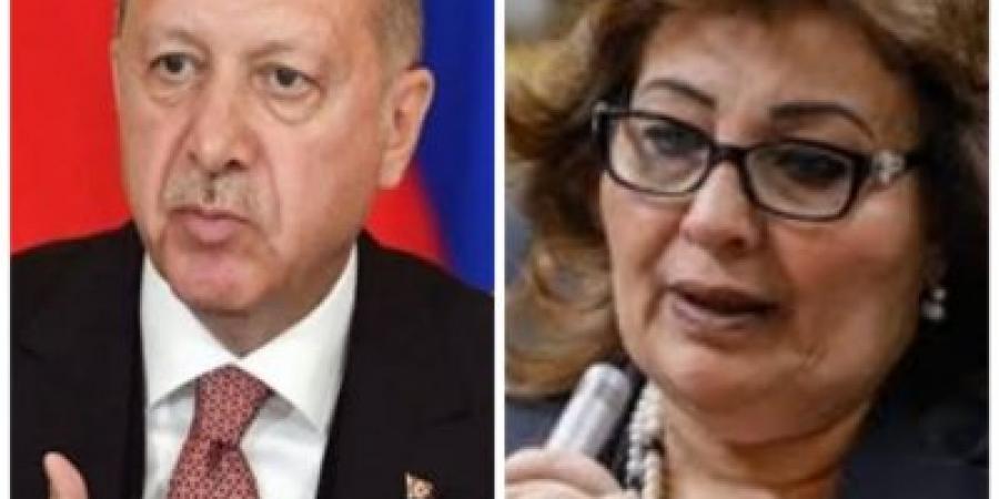 وكيل حقوق إنسان البرلمان تنتقد تصريحات اردوغان عن الوضع في مصر