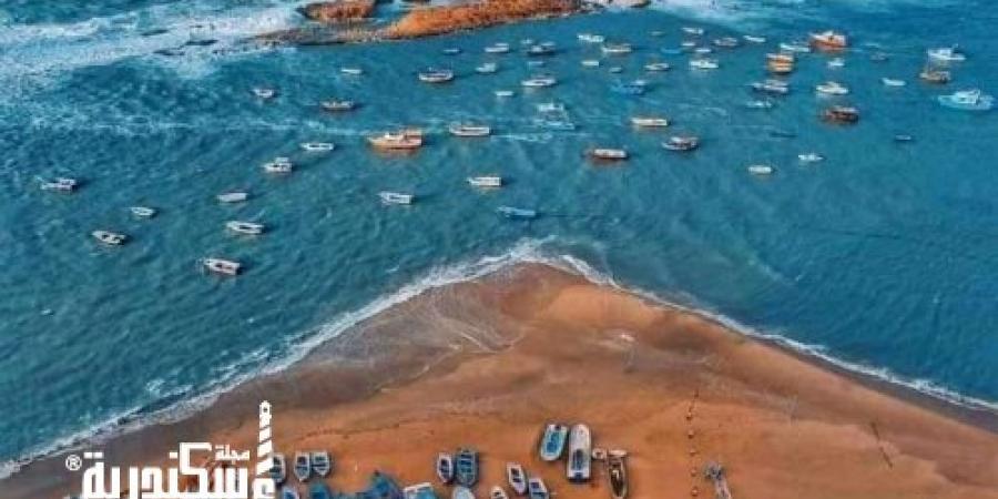 بمزايدات علنية محافظة الإسكندرية تعلن طرح حق استغلال 15 «شاطئ وكافيتريا وموقف»