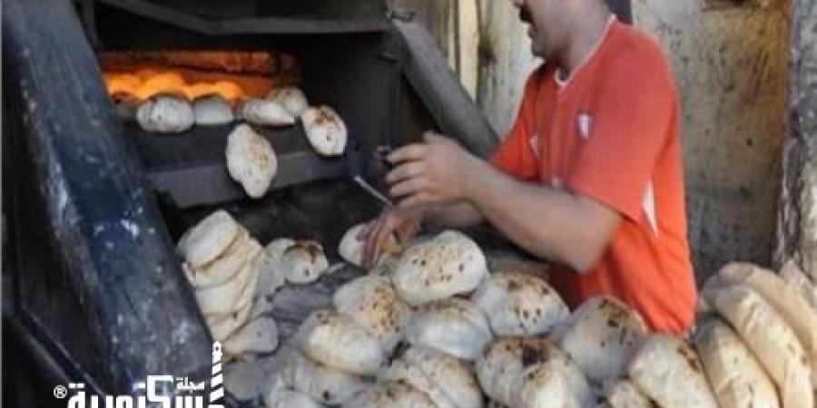 «تموين الإسكندرية» تفاجئ 8 إدارات وتحرر 314 محضرًا بمخالفات متنوعة