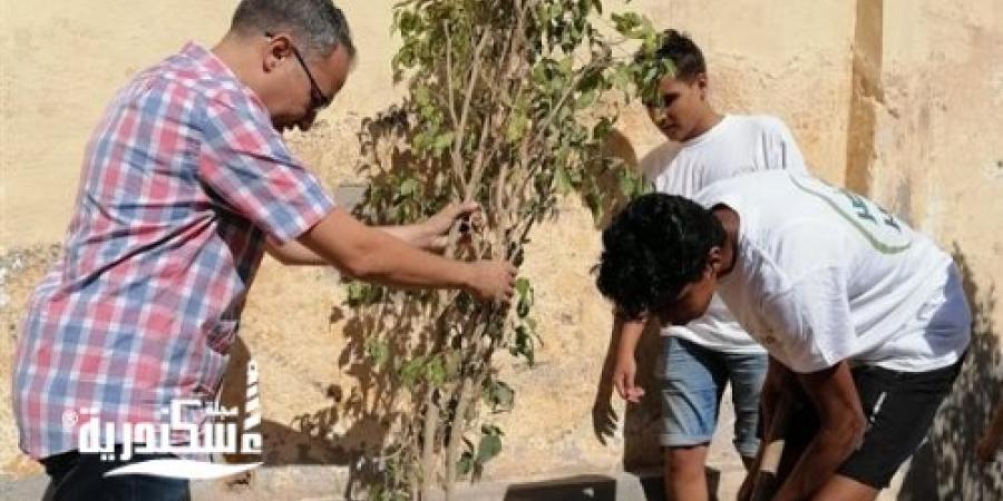 """ضمن مبادرة """"اتحضر للأخضر"""".. شباب ورياضة الإسكندرية تزرع 50 شجرة مثمرة"""